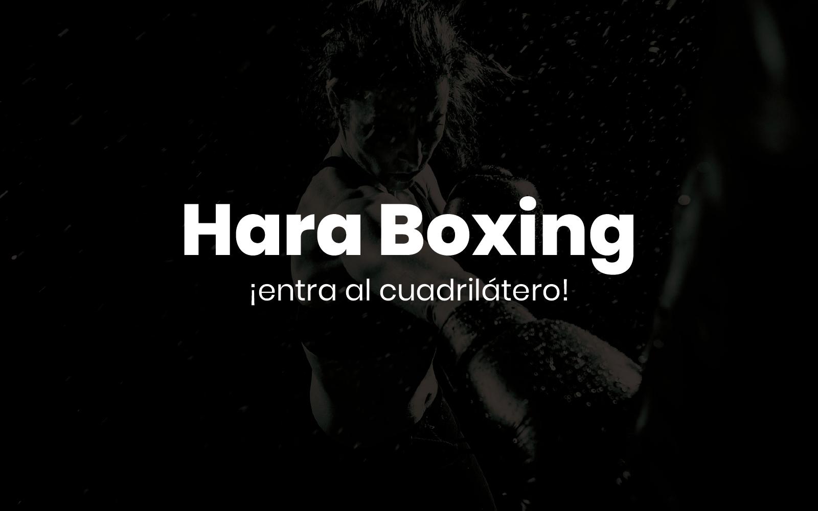 Hara Boxing